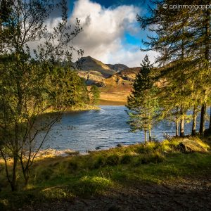 © Early Sunlight at Blea Tarn. Ref 9808. Colin Morgan Photography. Landscape Photograph | Print | Canvas