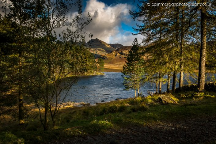 Early Sunlight at Blea Tarn. Ref 9808 Colin Morgan Photography © Landscape Photograph | Print | Canvas