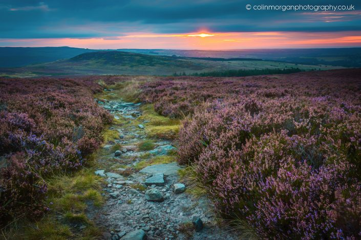 Colin Morgan Photography © Sunrise in the Simonside Hills, Northumberland Ref 6787 Landscape Photograph | Print | Canvas