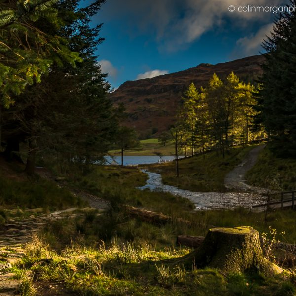 Early Sunlight at Blea Tarn Colin Morgan Photography © Landscape Photograph | Print | Canvas